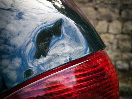 car-damage-xs